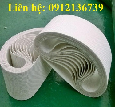 Băng tải PVC trắng an toàn thực phẩm