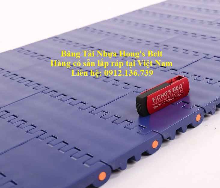 băng tải nhựa Hongs Belt