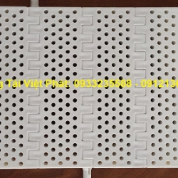 Modular Belt P = 50.8mm Perforated