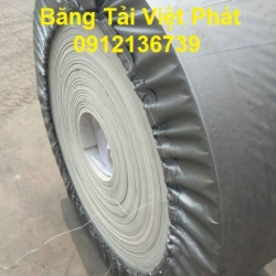 White PU conveyor belt and white rubber belt seal with molded border