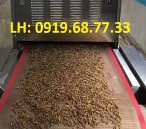 máy sấy sử dụng băng tải chịu nhiệt
