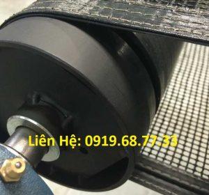 chống sàng băng của băng tải chịu nhiệt PTFE